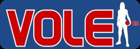 www.volei.es